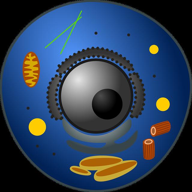 la célula animal