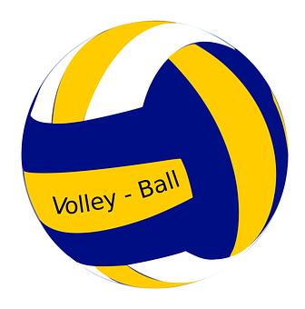 pelota voleibol