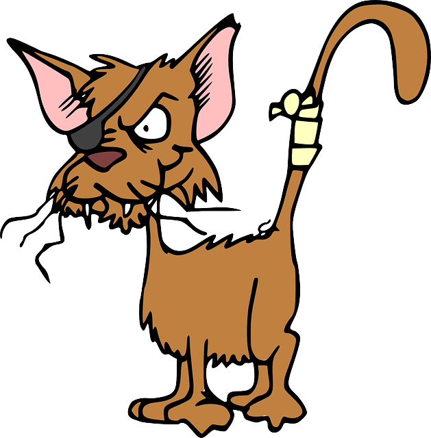 gato atrevido