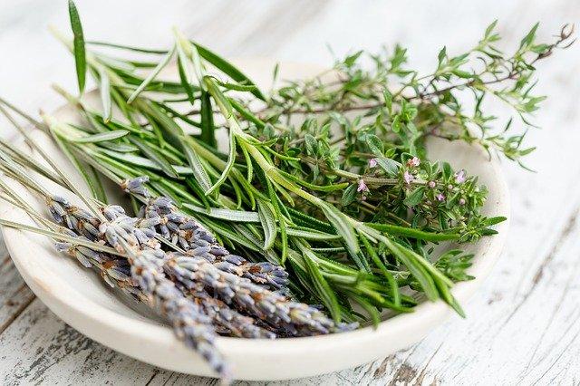 infusiones de hierbas para paliar almhongo